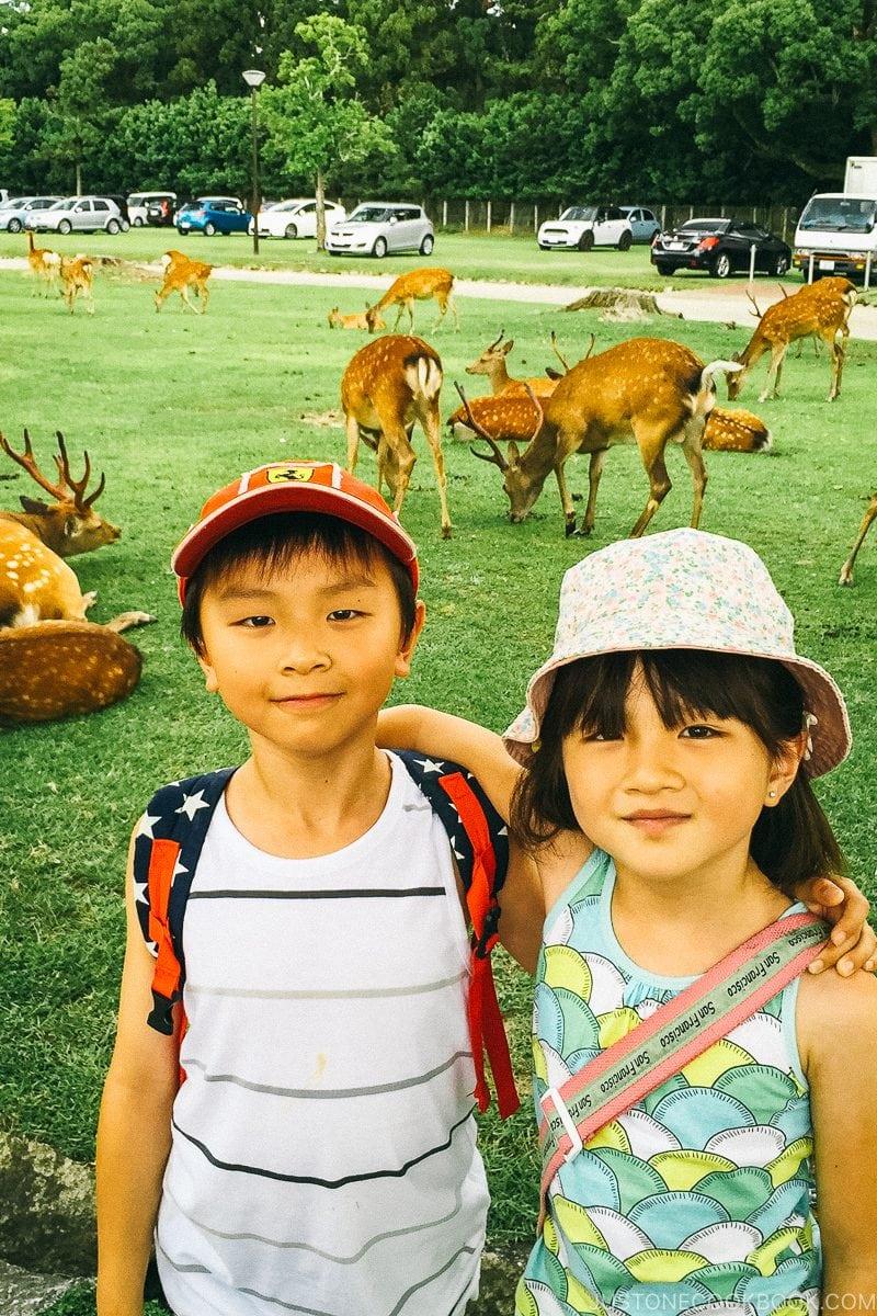 children in front of deers at Nara Park - Nara Guide: Things to do in Nara | www.justonecookbook.com