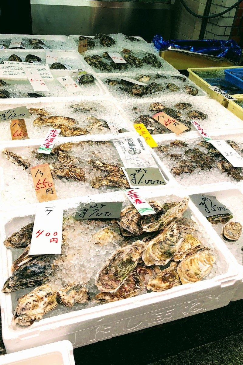 varieties of oyster in ice - Osaka Guide: Kuromon Ichiba Market and Kitchenware Street | www.justonecookbook.com