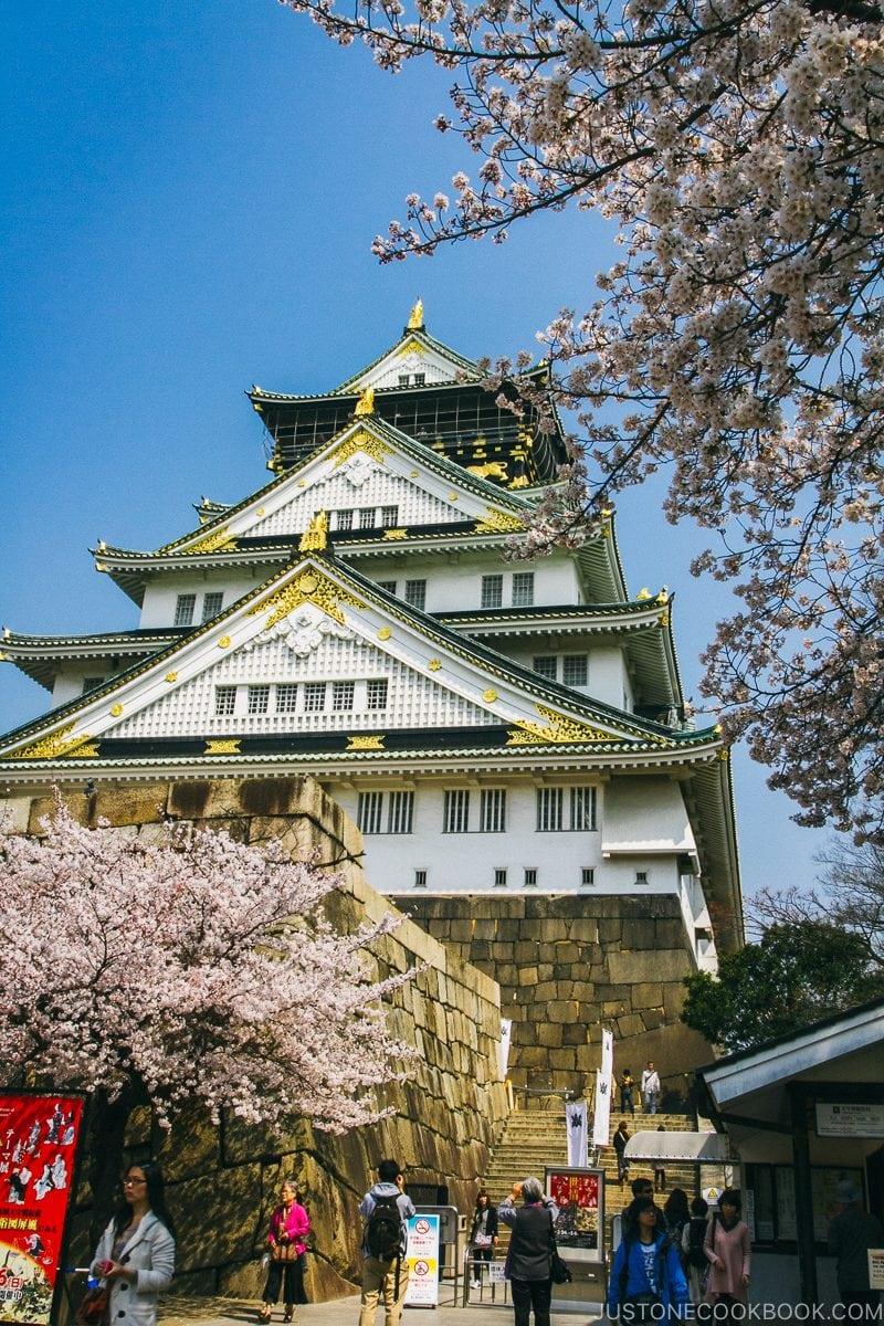 Osaka Castle during cherry blossom - Osaka Guide: Osaka Castle| www.justonecookbook.com