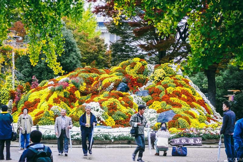 a mountain of flowers on display - Osaka Guide: Osaka Castle| www.justonecookbook.com