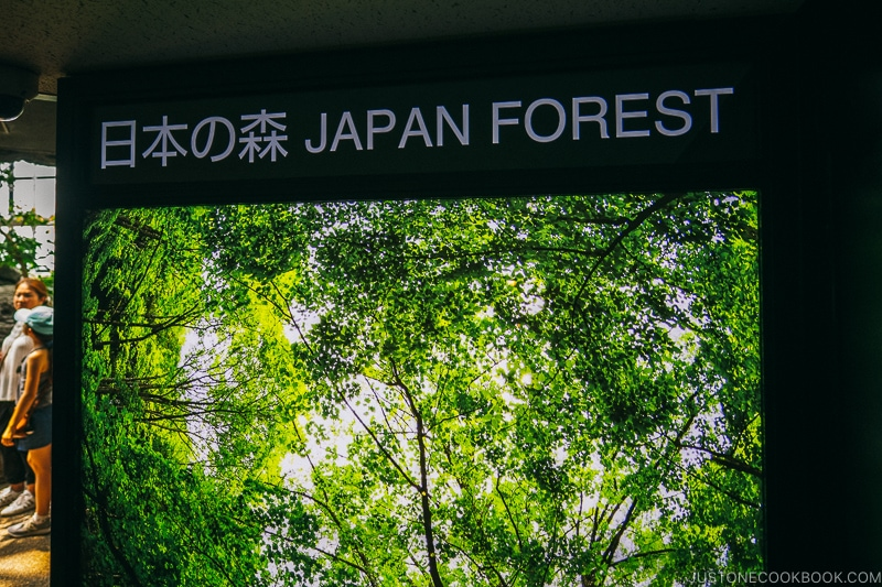 Japan Forest sign at Kaiyukan - Osaka Guide: Tempozan Harbor Village | www.justonecookbook.com
