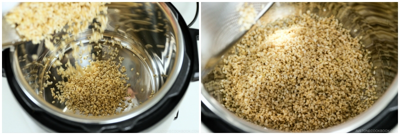 Instant Pot Brown Rice 6