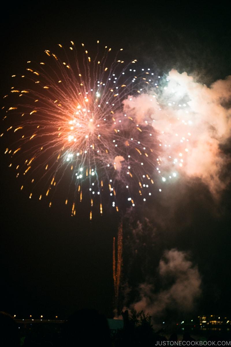 fireworks at Lake Kawaguchi Fireworks Festival - Japan's Fireworks - Hanabi | www.justonecookbook.com