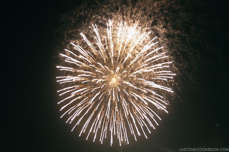 fireworks at Yokohama Sparkling Twilight fireworks festival - Japan's Fireworks Hanabi | www.justonecookbook.com