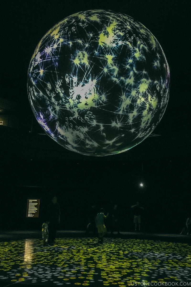 Wonder Moments by Takahiro Matsuo NIFREL - Osaka Guide: Expocity | www.justonecookbook.com