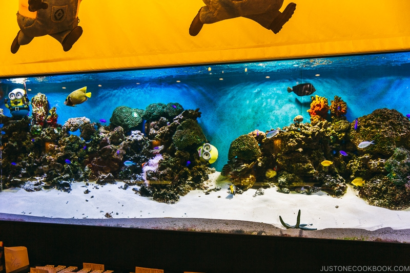 aquarium behind register at Hotel Universal Port - Osaka Guide: Universal Studios Japan | www.justonecookbook.com