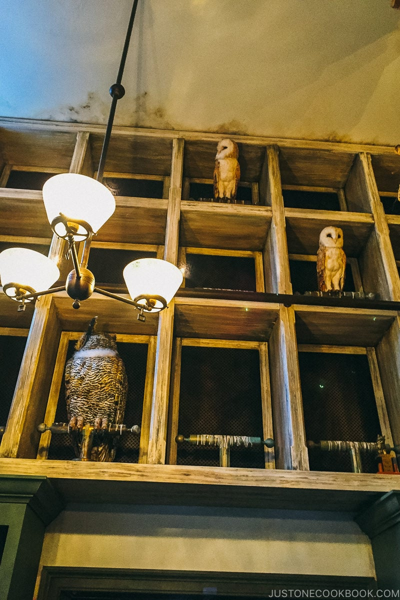owls perching on top of the gift shop - Osaka Guide: Universal Studios Japan | www.justonecookbook.com