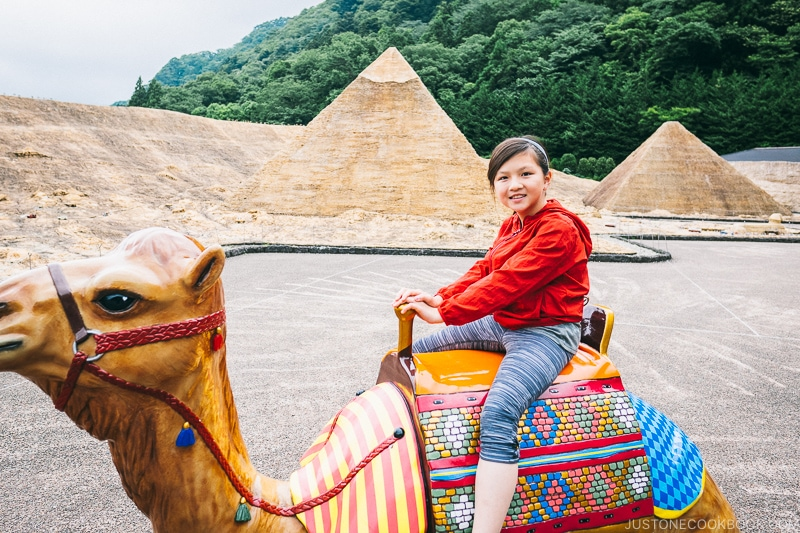 child riding on top of camel - Nikko Travel Guide : Tobu World Square | www.justonecookbook.com