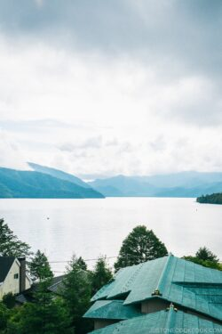 view of Lake Chuzenji - Things to do around Lake Chuzenji | www.justonecookbook.com