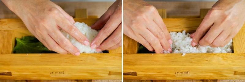 Mackerel Pressed Sushi 15