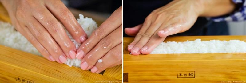 Mackerel Pressed Sushi 16