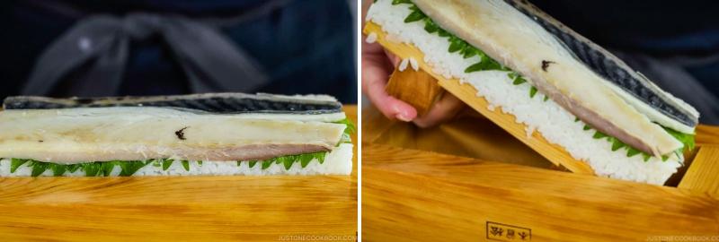 Mackerel Pressed Sushi 19