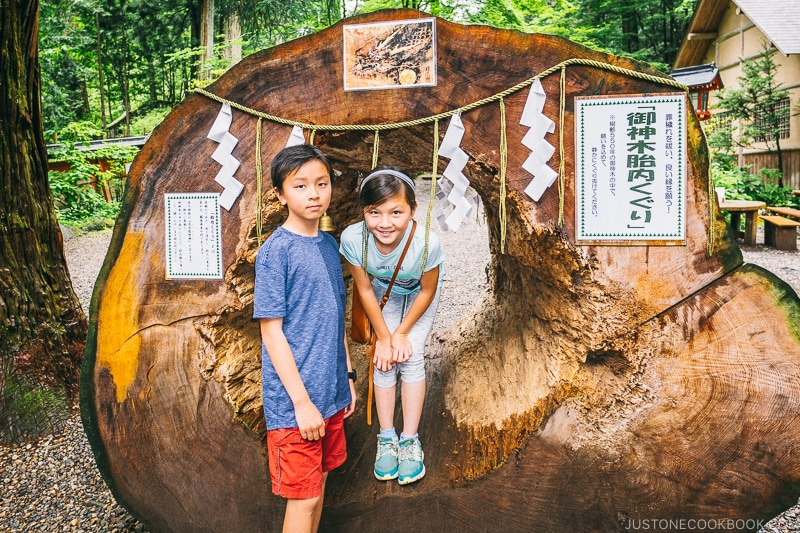 two child next to a hallowed out tree at Nikko Futarasan Jinja - Places to Visit and Things to do in Nikko | www.justonecookbook.com