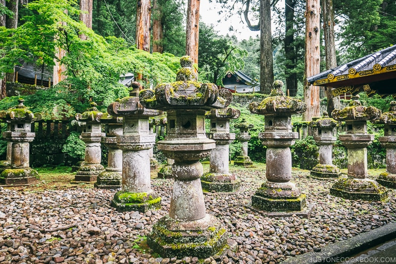 stone lanterns on the grounds of Nikkosanrinnoji Taiyuin - Places to Visit and Things to do in Nikko | www.justonecookbook.com