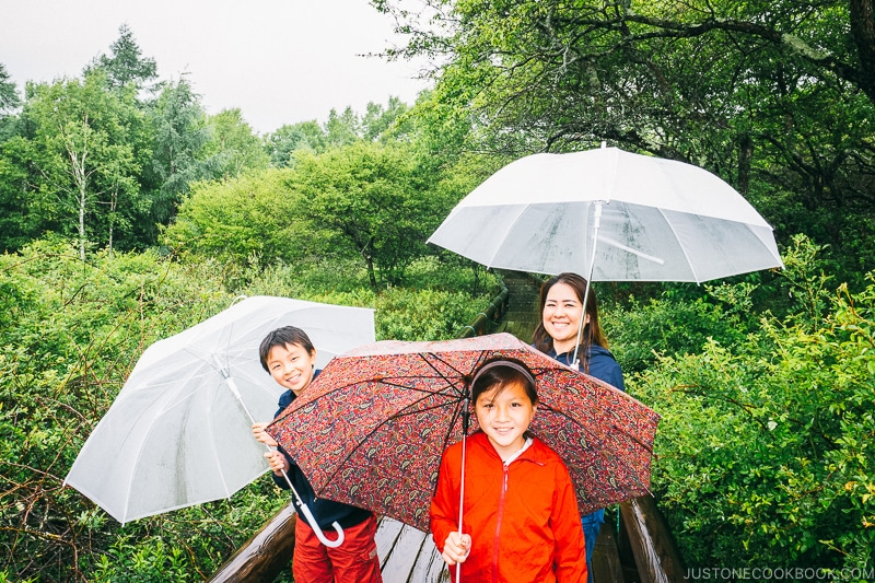 family with umbrella at Senjogahara Marsh - Things to do around Lake Chuzenji | www.justonecookbook.com