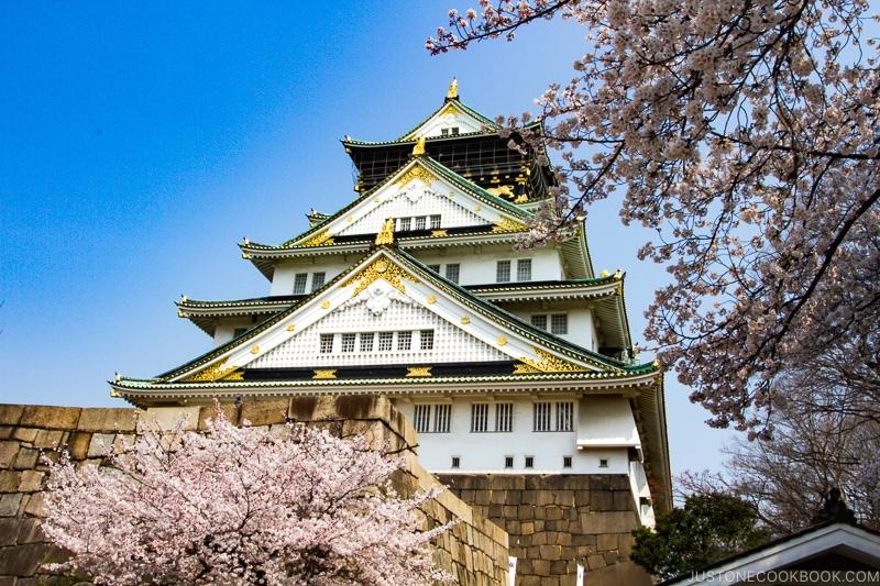 Osaka Castle during cherry blossom - Insiders' Guide for For First Time Visitors to Japan | www.justonecookbook.com