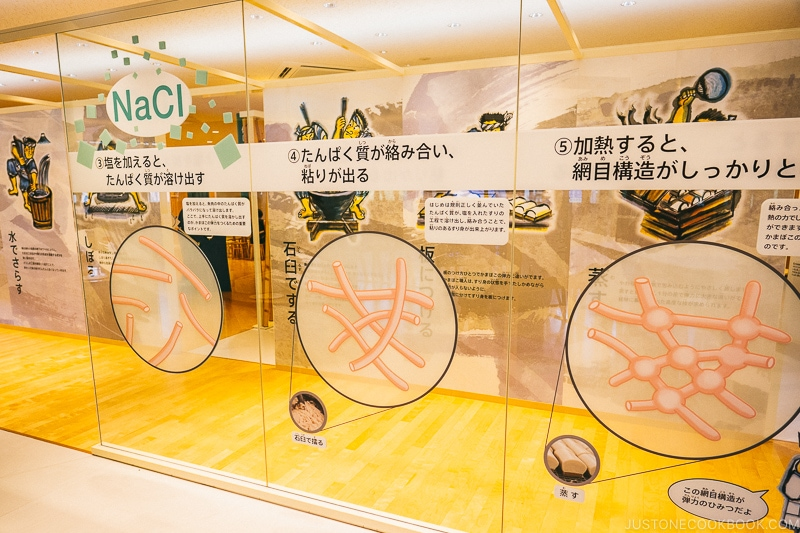 exhibits on the science of kamaboko - Make Fish Cakes at Suzuhiro Kamaboko Museum | www.justonecookbook.com