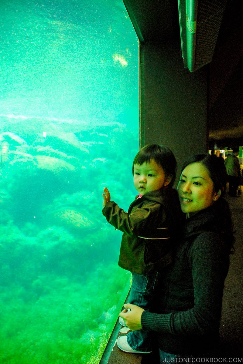 woman and girl at Hakone-en Aquarium - Hakone Lake Ashi Guide | www.justonecookbook.com