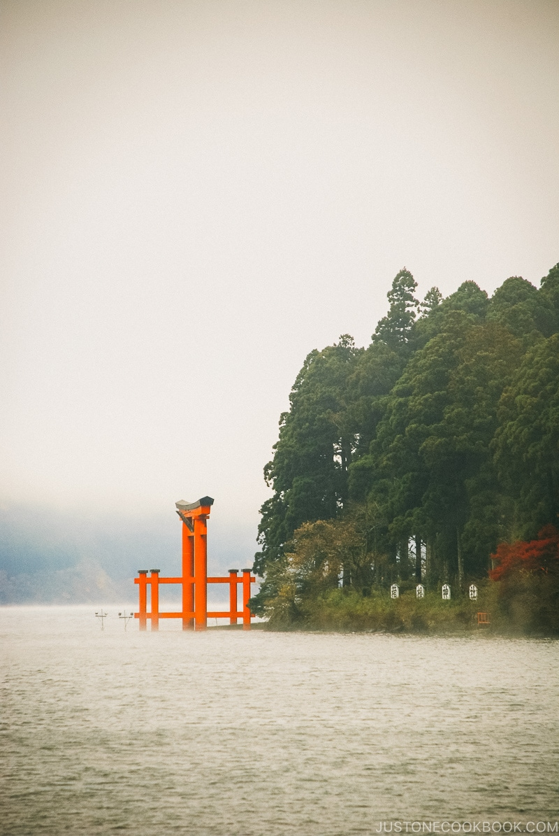 Hakone Shrine Torii Gate - Hakone Lake Ashi Guide | www.justonecookbook.com