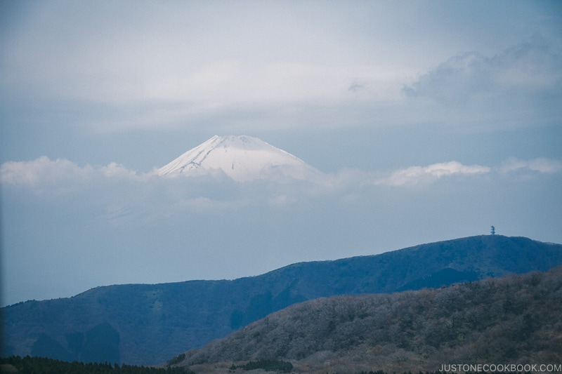 snow-capped Mt. Fuji from gondola - Hakone Ropeway and Owakudani Hell Valley | www.justonecookbook.com