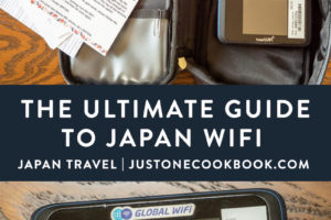 mobile data plan and wifi options for Japan visitors