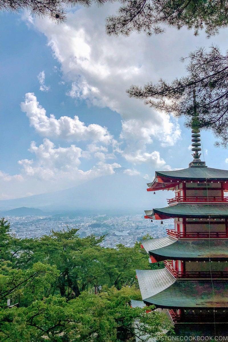 Chureito Pagoda and Mt. Fuji - Things to do around Lake Kawaguchi   www.justonecookbook.com