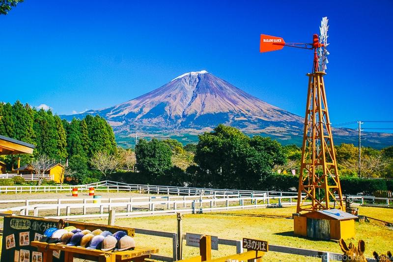 view of Mt. Fuji from Makaino Farm - Things to do around Lake Kawaguchi   www.justonecookbook.com