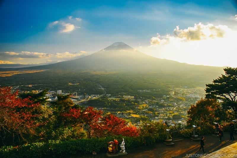 Mt. Fuji from Kawaguchiko Tenjozan Park - Things to do around Lake Kawaguchi   www.justonecookbook.com