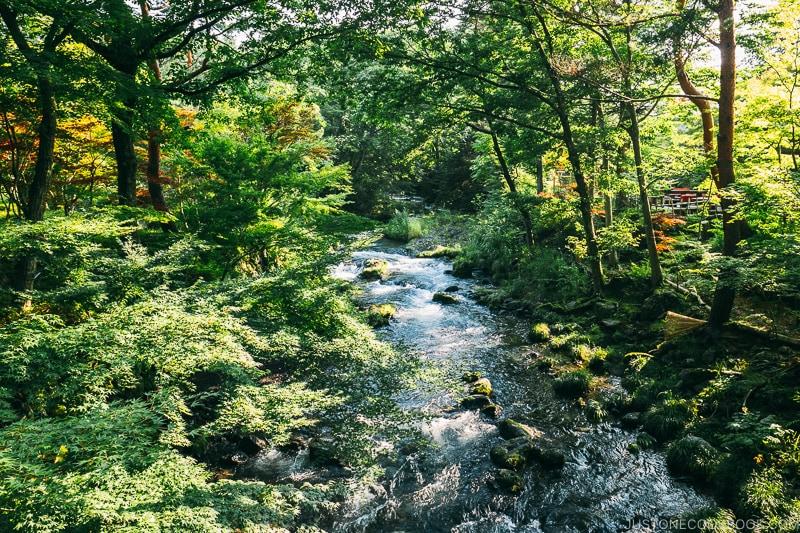 river running through the garden at Hotel Kaneyamaen - Things to do around Lake Kawaguchi   www.justonecookbook.com