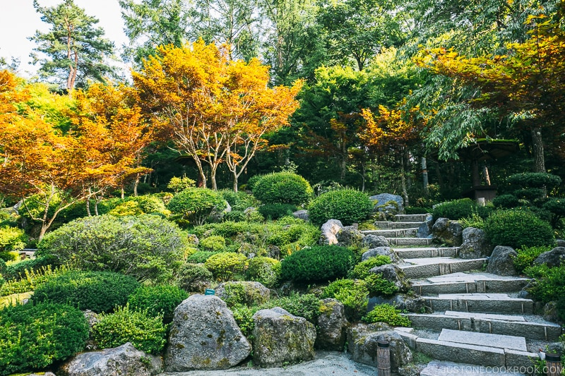 trees and stone paths at the garden at Hotel Kaneyamaen - Things to do around Lake Kawaguchi   www.justonecookbook.com