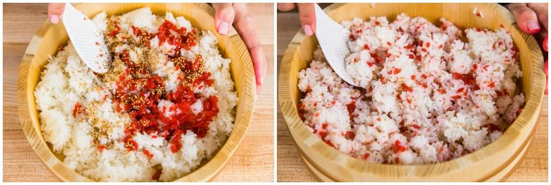 Plum Rice Ball 4