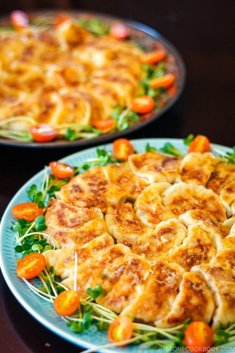 Napa cabbage gyoza on plates.