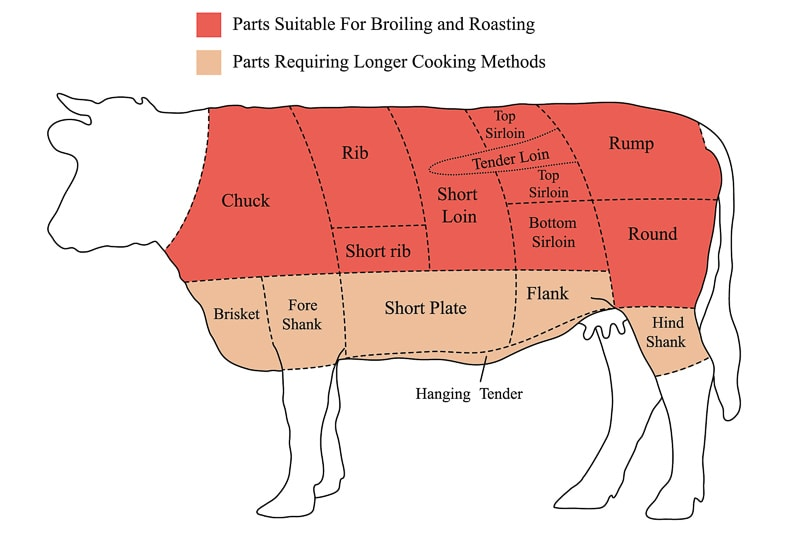 parts of a cow