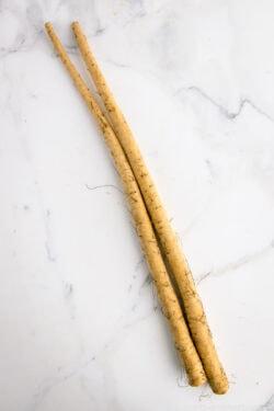 Burdock Roots (Gobo) | Easy Japanese Recipes at JustOneCookbook.com