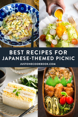 Japanese picnic foods