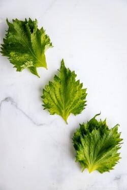 Shiso Leaves | Easy Japanese Recipes at JustOneCookbook.com