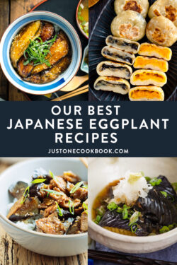 Easy Japanese Eggplant Recipes