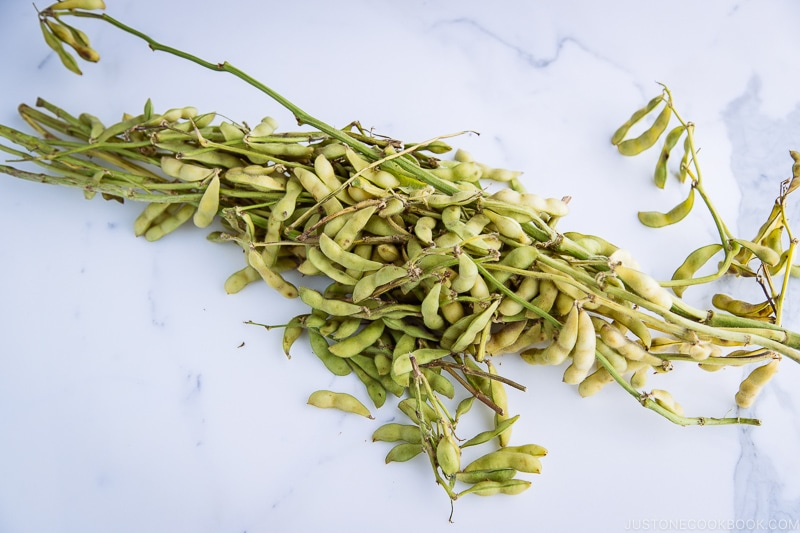 Edamame soy beans on the table.