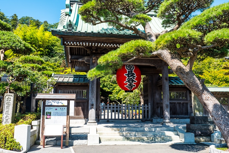 wood temple gate at Hasedera