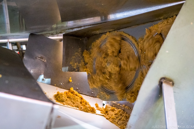 soy bean being crushed