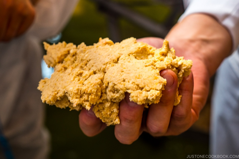 soy bean mixture being held in a hand