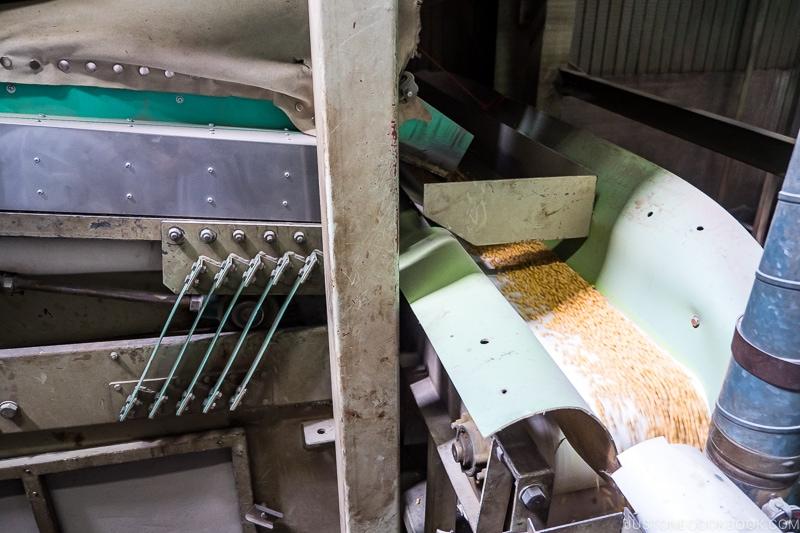 soybean flowing through machines