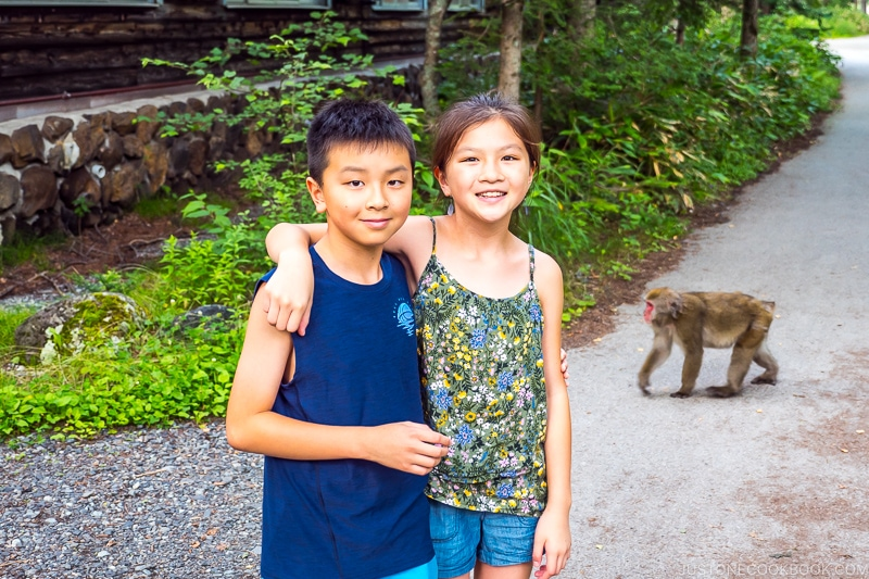 two children with a monkey in the background