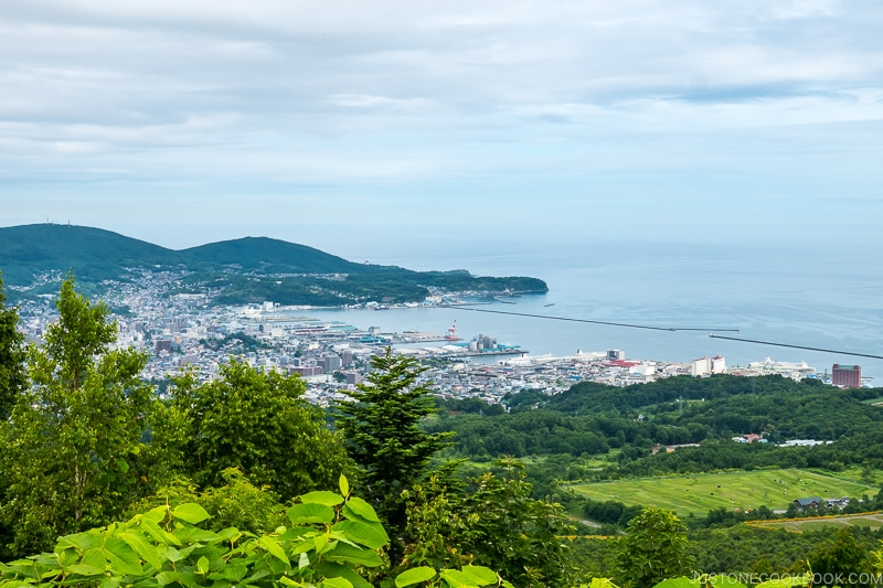 view of Otaru from Kenashiyama Observation Deck