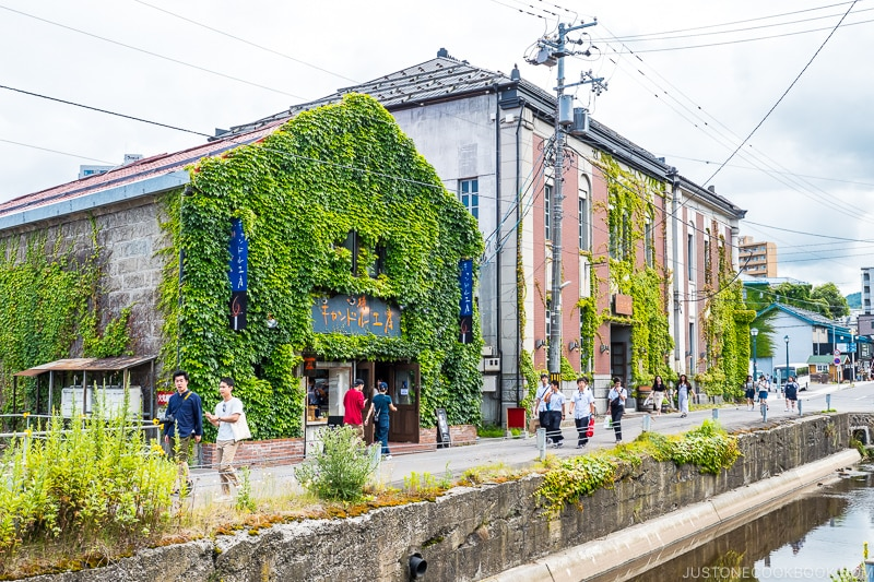brick buildings covered in ivy next to a canal