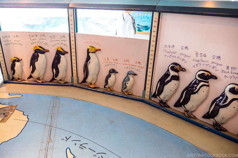 figures of different types of penguins on the wall