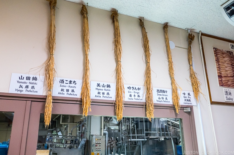 various types of rice hanging from the ceiling