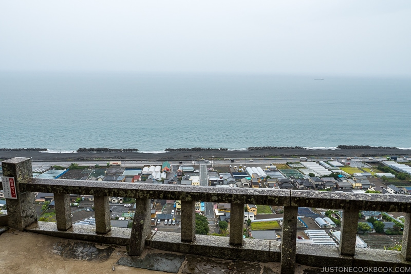 looking out over the railing at Suruga Bay